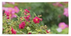 Beach Towel featuring the photograph Rose Garden Promise by Kim Hojnacki