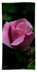 Rose Garden Visitor Beach Sheet