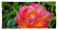 Rose In The Evening Beach Towel