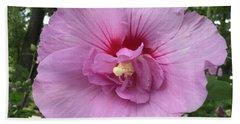 Rose Of Sharon Blossom Beach Towel by Patricia E Sundik