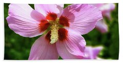 Rose Of Sharon Flowers Beach Sheet