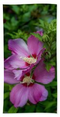 Rose Of Sharon Hibiscus Vertical Beach Towel