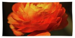 Rose Of Spring Beach Towel
