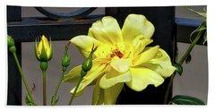 Rose On Wrought Iron Beach Sheet