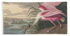Roseate Spoonbill, 1836  Beach Towel by John James Audubon