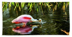 Roseate Spoonbill Feeding Beach Towel
