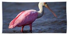 Roseate Spoonbill, Myakka River State Park, Florida Beach Sheet
