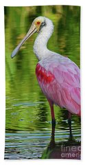 Beach Towel featuring the photograph Roseate Spoonbill Portrait by Larry Nieland