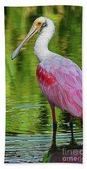 Roseate Spoonbill Portrait Beach Towel by Larry Nieland