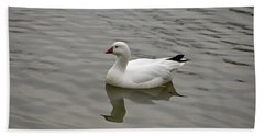 Beach Towel featuring the photograph Ross's Goose by Sandy Keeton