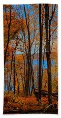 Round Valley State Park 5 Beach Towel by Raymond Salani III