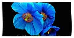 Royal Blue Poppies Beach Sheet by Jeannie Rhode