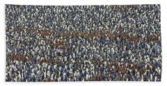 Beach Towel featuring the photograph Royal Layers by Tony Beck