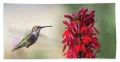 Ruby Throated Hummingbird 2017-2 Beach Towel
