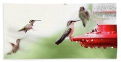 Ruby-throated Hummingbirds Beach Sheet