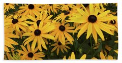 Rudbeckia Fulgida Goldsturm Beach Sheet