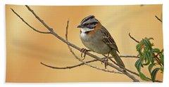 Rufous-collared Sparrow Beach Towel