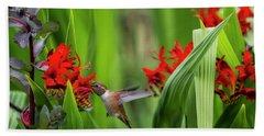 Rufous Hummingbird Feeding, No. 3 Beach Towel