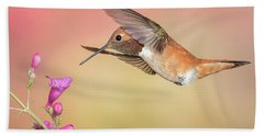 Rufous Hummingbird With Penstemon Beach Towel