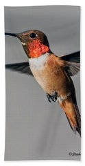 Rufous Male In-flight Beach Sheet