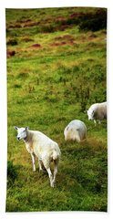 Beach Towel featuring the photograph Rural Idyll. Wicklow. Ireland by Jenny Rainbow