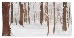 Rustic Winter Forest Beach Towel by Dan Sproul