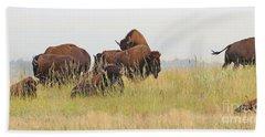 Rut Season For Buffalo 0077 Beach Sheet