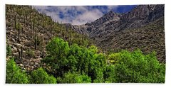 Beach Towel featuring the photograph Sabino Canyon H33 by Mark Myhaver