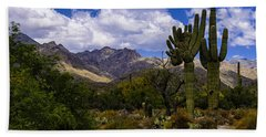 Beach Towel featuring the photograph Sabino Canyon No4 by Mark Myhaver