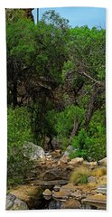 Beach Towel featuring the photograph Sabino Canyon V49 by Mark Myhaver