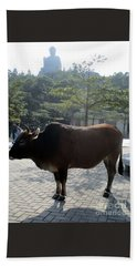 Beach Towel featuring the photograph Sacred Cow 3 by Randall Weidner