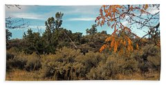 Sagebrush And Lava Beach Towel by Cindy Murphy - NightVisions