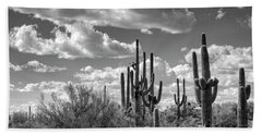 Beach Towel featuring the photograph Saguaro And Blue Skies Ahead In Black And White  by Saija Lehtonen