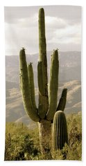 Saguaro Beach Sheet by Brenda Pressnall
