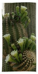 Saguaro Buds And Blooms Beach Sheet