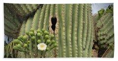 Saguaro In Bloom Beach Towel