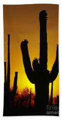 Saguaro Sunset Beach Sheet by Sandra Bronstein