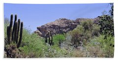 Saguaros Beach Sheet