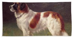 Saint Bernard Beach Towel