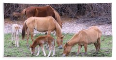 Salt River Wild Horses In Winter Beach Sheet