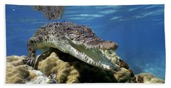 Saltwater Crocodile Smile Beach Sheet by Mike Parry