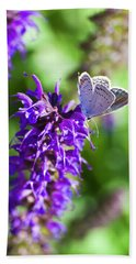 Salvia's Small Visitor Beach Towel