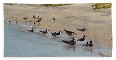 Beach Towel featuring the photograph San Diego Skimmers by Karen Molenaar Terrell