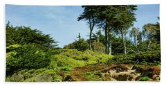 San Francisco Colorful Spring - Blooming Hillside With Pines Beach Towel