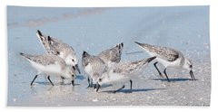 Beach Towel featuring the photograph Sanderlings by Nature and Wildlife Photography