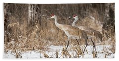 Beach Towel featuring the photograph Sandhill Crane 2016-4 by Thomas Young