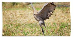 Beach Sheet featuring the photograph Sandhill Crane Morning Stretch by Ricky L Jones