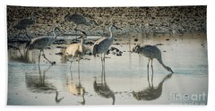Sandhill Crane Reflections Beach Sheet