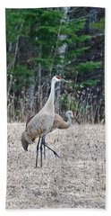 Beach Towel featuring the photograph Sandhill Cranes 1166 by Michael Peychich