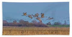 Sandhill Cranes Flying At Sunset Beach Sheet